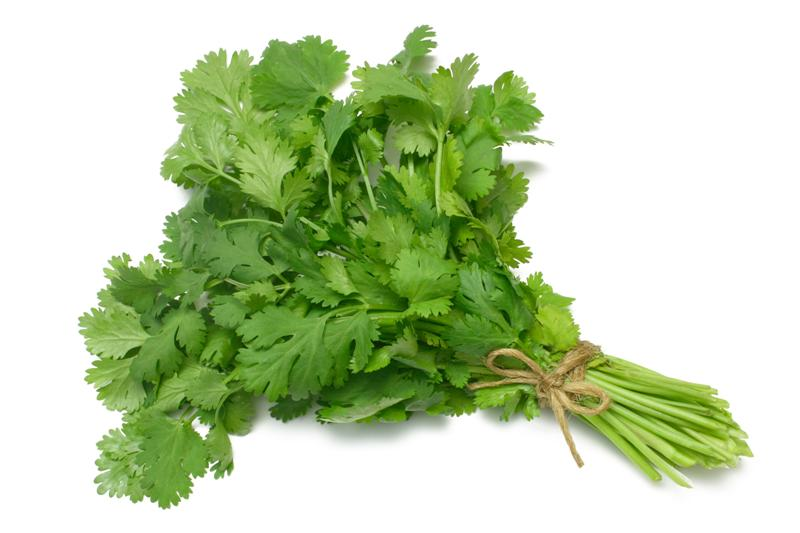 Coriander-Vegetables Seeds